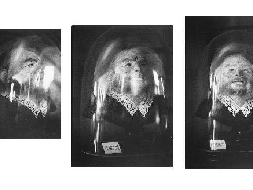 Zoe Leonard, <i>Preserved Head of a Bearded Woman (Musée Orfila)</i>, 1991