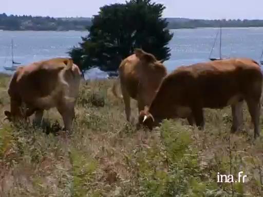 Le conservatoire du littoral et l'agriculture |