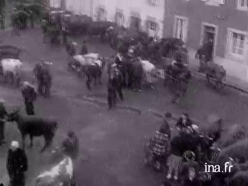 Foire aux bestiaux à Lesneven |